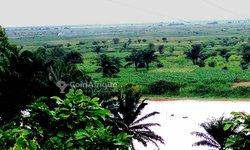 Vente terrains agricoles à Djidja