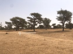 Terrain agricole 5219 m² - Boulfo