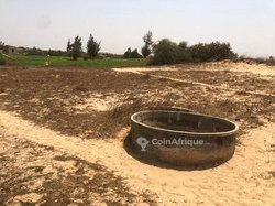 Vente Verger agricole 4883 m² - Kayar