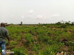 Terrains agricoles 17 ha - Bingerville