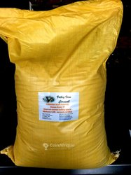 Curcuma sac 25 kgs