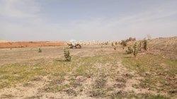 Vente Terrain agricole 20000 m² - Touba