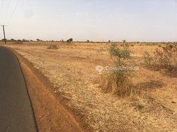 Terrains agricoles 6567 m² - Pout Diack