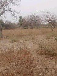 Vente Terrain 2 hectares - Koubri