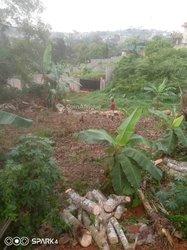 Terrain 200 m2 - Nkomo Yaoundé