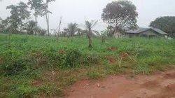 Vente Terrain 500 m² - Nkoloman Yaoundé