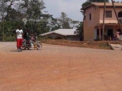 Terrains 5000 m²  - Yaoundé