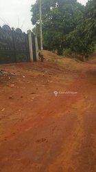 Terrains 350 m²  - Yaoundé