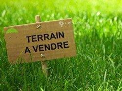 Vente Terrain 3 lots - Alogavi