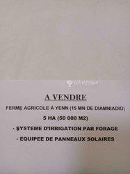 Vente Ferme agricole 5 hectares - Diamniadio