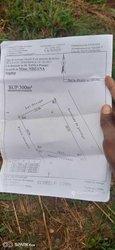 Vente Terrain 200 m² - Yaoundé