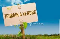 Terrains 2237 m2 - Yaoundé