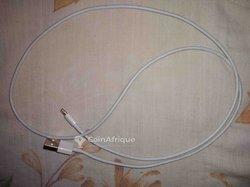 Câble iPhone