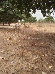 Vente Terrain agricole - Keur Madaro