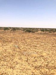 Terrains agricoles 5000 ha - Tamba