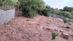 Terrain agricole 9000 m²