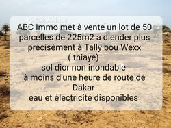 Parcelles agricoles 225 m2 - Tally Bou Wexx Tiaye
