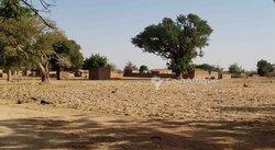 Parcelle 532 m² - Route de Ouahigouya