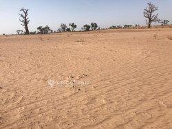 Terrain agricole de 1,75 hectare à Thiénéba sérère