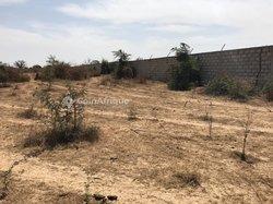 Vente Terrain agricole 1,12 ha - Khaye Serere