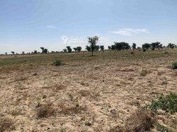 Vente Terrain agricole 20 ha - Djoulakh