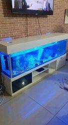 Aquarium plagiste
