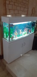 Aquarium Campagne
