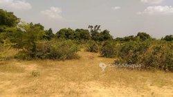 Terrain 3 hectares - Ouagadougou