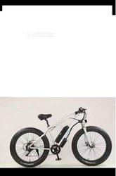 Fat Bike électrique 46v