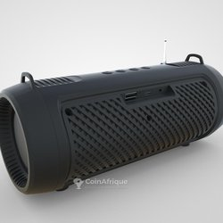 Radio wireless speaker