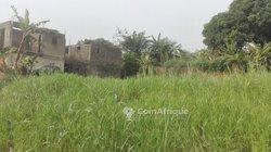 Vente Terrain - Mbengue City