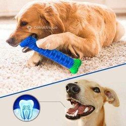 Brosse à dents et jouet pour chiens