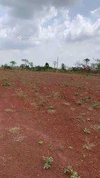 Vente Terrain 1000 m² - Yamoussoukro