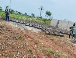 Terrains agricoles - Ouedo