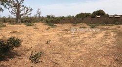 Terrains agricoles 6450 m² - Khaye