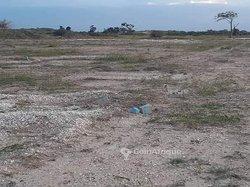 Terrain agricole 5000 ha - Tamba
