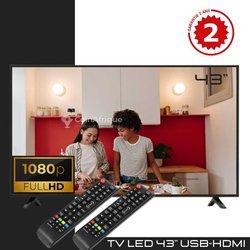 "TV  43"""