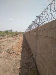 Rouleau barbelés clôture 7 mètres