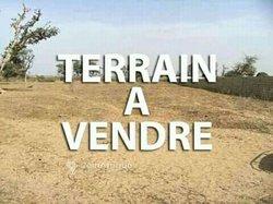 Terrain agricole 1 ha - Faladiè