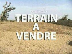 Terrain - Hamdallaye
