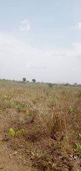 Terrain  157 ha - Ketou Save