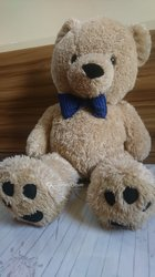 Peluche Teddy l'ours