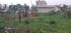 Terrains 1000 m²  - Yaoundé