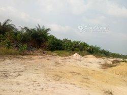 Vente terrains 1000m2  - Douala
