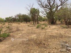 Vente Terrain 6 hectares - Ouaga 2000 Extension Sud