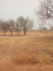 Terrains agricoles 27500 m2 - Koubri