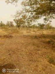 Terrains agricoles - Commune de Saaba