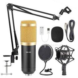 Micro d'enregistrement studio