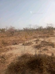 Terrains agricoles 2 ha - Ouagadougou.