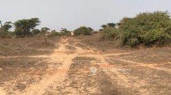 Terrains agricoles 1.94 ha - Gorom 1